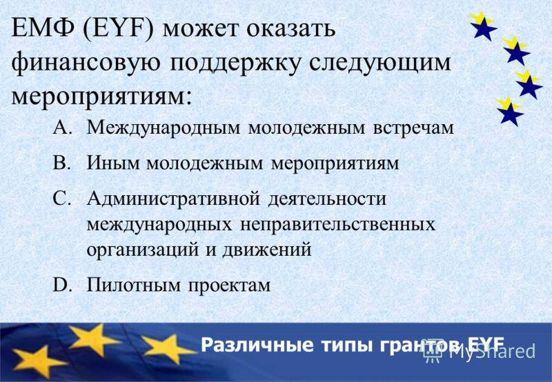 Key bodies of the Council of Europe ЕМФ (EYF) может оказать финансовую поддержку следующим мероприятиям: A.Международным молодежным встречам B.Иным молодежным мероприятиям C.Административной деятельности международных неправительственных организаций