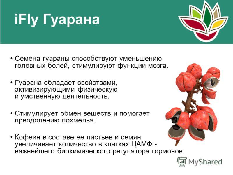 Семена гуараны способствуют уменьшению головных болей, стимулируют функции мозга. Гуарана обладает свойствами, активизирующими физическую и умственную деятельность. Стимулирует обмен веществ и помогает преодолению похмелья. Кофеин в составе ее листье