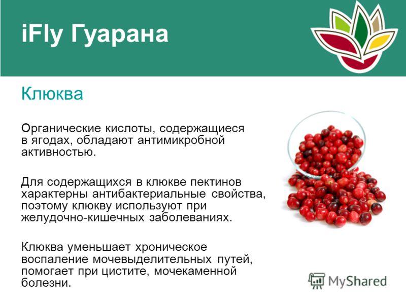 iFly Гуарана Клюква Органические кислоты, содержащиеся в ягодах, обладают антимикробной активностью. Для содержащихся в клюкве пектинов характерны антибактериальные свойства, поэтому клюкву используют при желудочно-кишечных заболеваниях. Клюква умень
