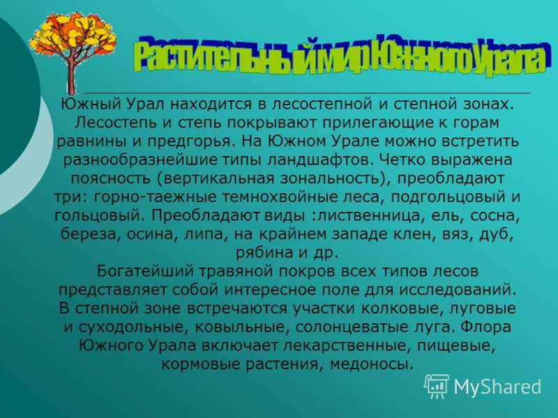 Южный Урал находится в лесостепной и степной зонах. Лесостепь и степь покрывают прилегающие к горам равнины и предгорья. На Южном Урале можно встретить разнообразнейшие типы ландшафтов. Четко выражена поясность (вертикальная зональность), преобладают