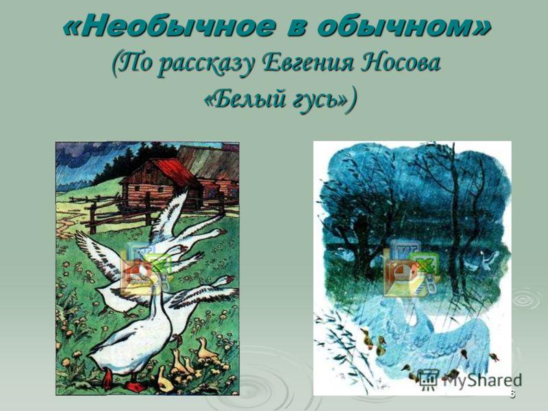 6 «Необычное в обычном» (По рассказу Евгения Носова «Белый гусь»)