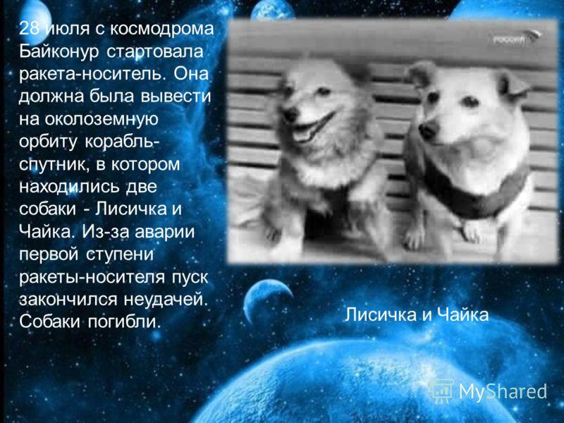 28 июля с космодрома Байконур стартовала ракета-носитель. Она должна была вывести на околоземную орбиту корабль- спутник, в котором находились две собаки - Лисичка и Чайка. Из-за аварии первой ступени ракеты-носителя пуск закончился неудачей. Собаки