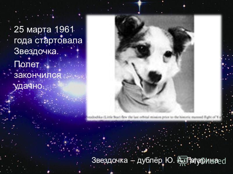 25 марта 1961 года стартовала Звездочка. Полет закончился удачно. Звездочка – дублёр Ю. А. Гагарина