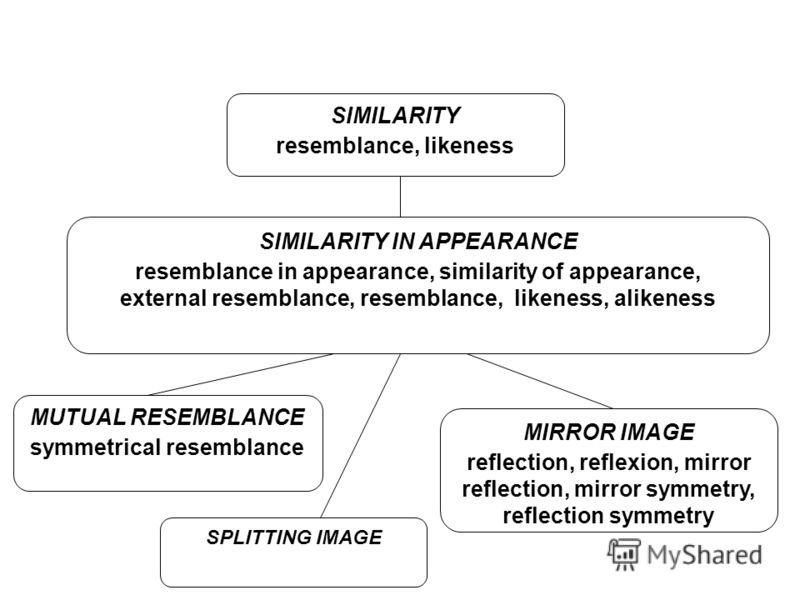 SIMILARITY resemblance, likeness SIMILARITY IN APPEARANCE resemblance in appearance, similarity of appearance, external resemblance, resemblance, likeness, alikeness MUTUAL RESEMBLANCE symmetrical resemblance SPLITTING IMAGE MIRROR IMAGE reflection,