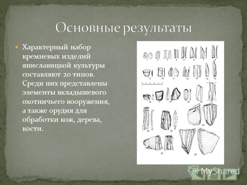 Характерный набор кремневых изделий яниславицкой культуры составляют 20 типов. Среди них представлены элементы вкладышевого охотничьего вооружения, а также орудия для обработки кож, дерева, кости.