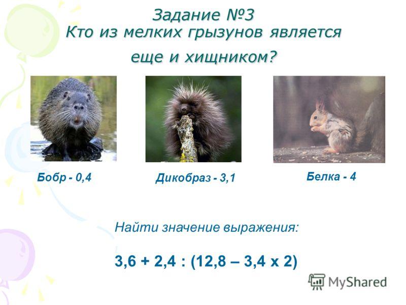Задание 3 Кто из мелких грызунов является еще и хищником? Бобр - 0,4 Дикобраз - 3,1 Белка - 4 Найти значение выражения: 3,6 + 2,4 : (12,8 – 3,4 х 2)