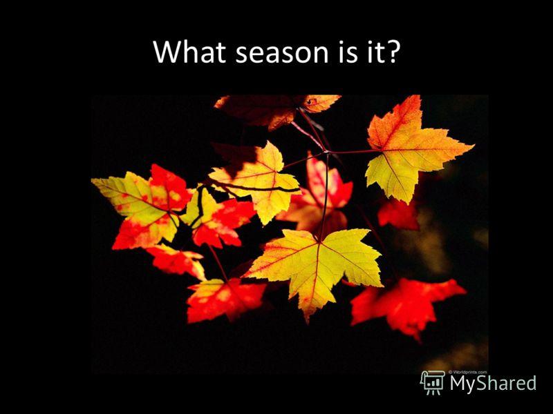 seasons [si:znz]