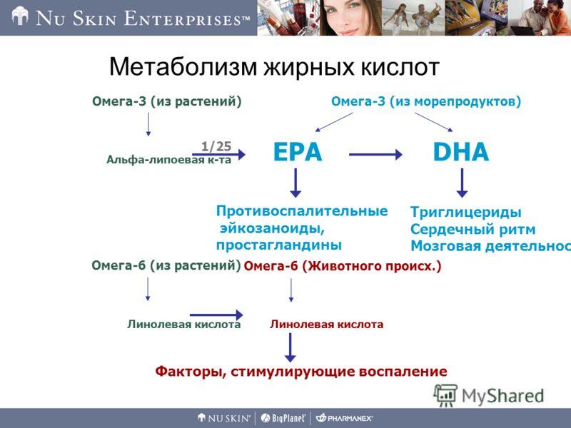 Метаболизм жирных кислот Факторы, стимулирующие воспаление Альфа-липоевая к-та Омега-3 (из растений) Противоспалительные эйкозаноиды, простагландины Триглицериды Сердечный ритм Мозговая деятельность Омега-3 (из морепродуктов) EPADHA 1/25 Линолевая ки