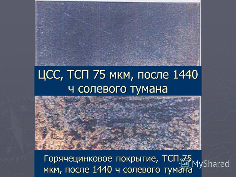 ЦСС, ТСП 75 мкм, после 1440 ч солевого тумана Горячецинковое покрытие, ТСП 75 мкм, после 1440 ч солевого тумана