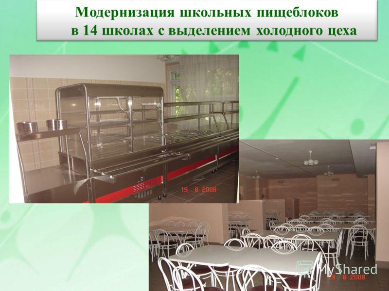 Модернизация школьных пищеблоков в 14 школах с выделением холодного цеха