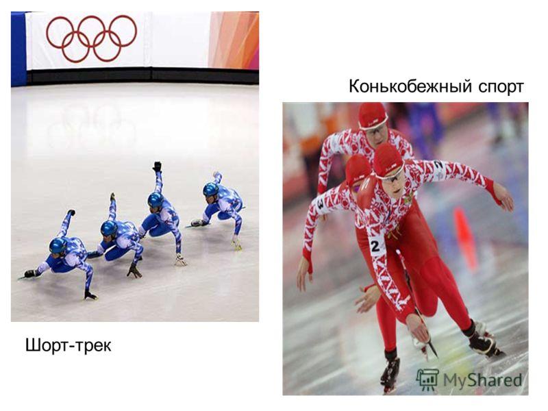 Шорт-трек Конькобежный спорт