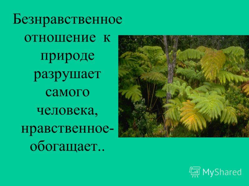 Безнравственное отношение к природе разрушает самого человека, нравственное- обогащает..