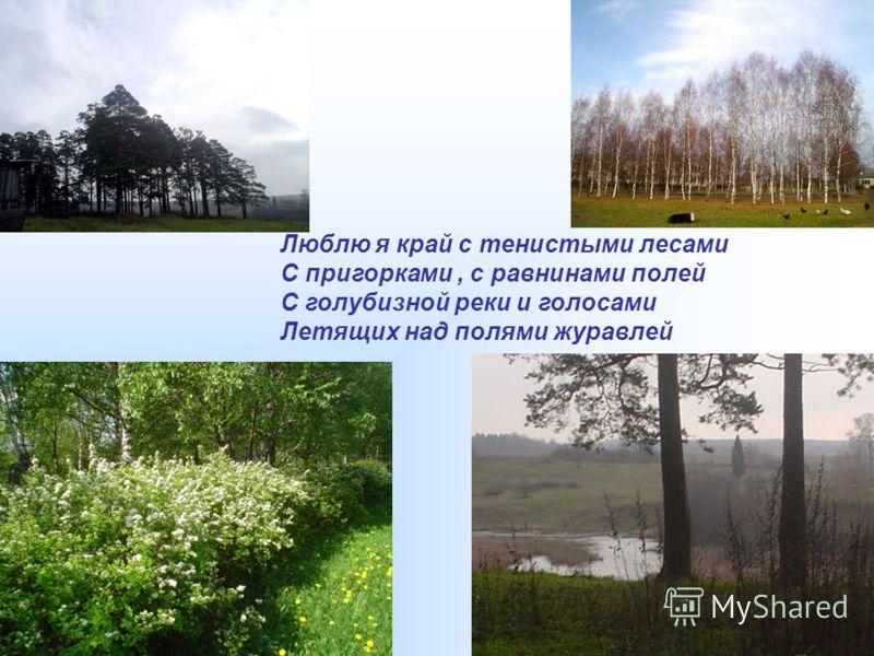 Люблю я край с тенистыми лесами С пригорками, с равнинами полей С голубизной реки и голосами Летящих над полями журавлей