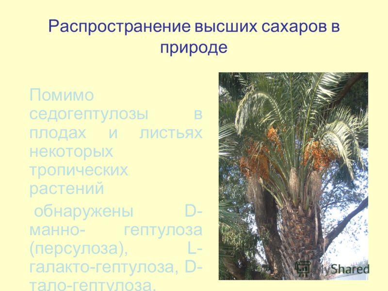 Помимо седогептулозы в плодах и листьях некоторых тропических растений обнаружены D- манно- гептулоза (персулоза), L- галакто-гептулоза, D- тало-гептулоза.