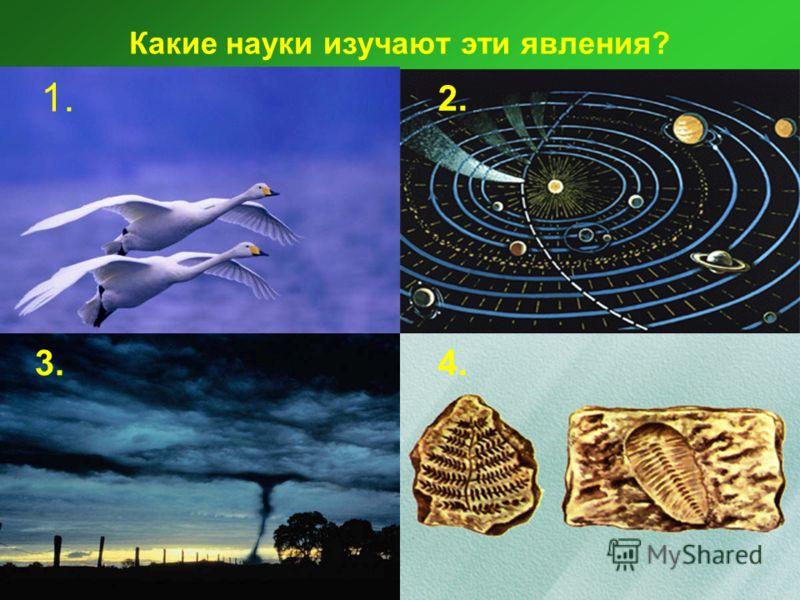Какие науки изучают эти явления 1 2 3 4