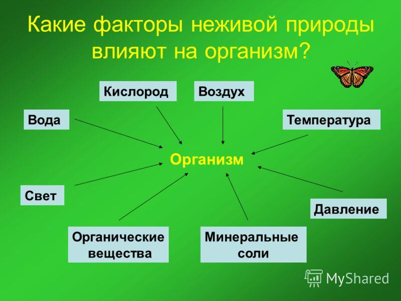 Какие факторы неживой природы