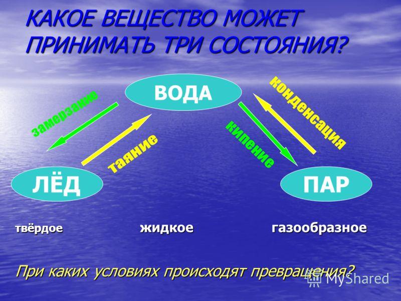 -19 О С 0 0 С + 4 0 С