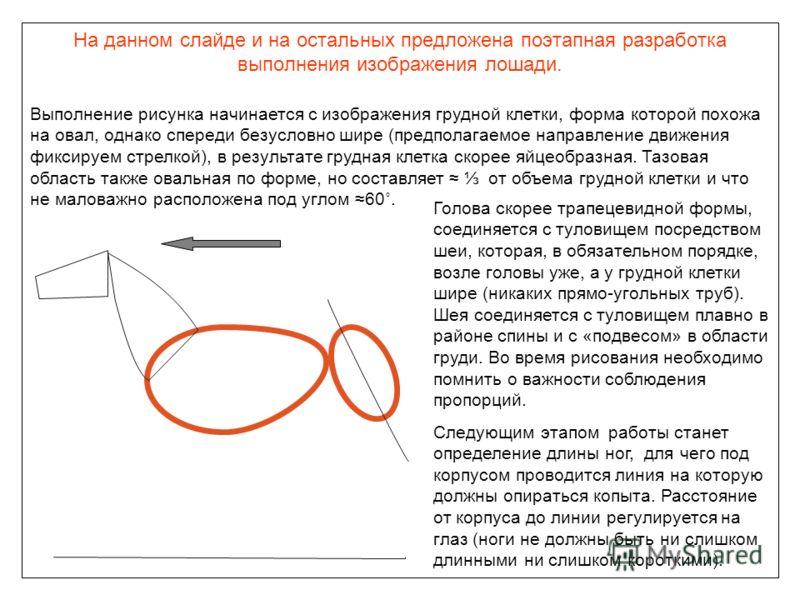 На данном слайде и на остальных предложена поэтапная разработка выполнения изображения лошади. Выполнение рисунка начинается с изображения грудной клетки, форма которой похожа на овал, однако спереди безусловно шире (предполагаемое направление движен