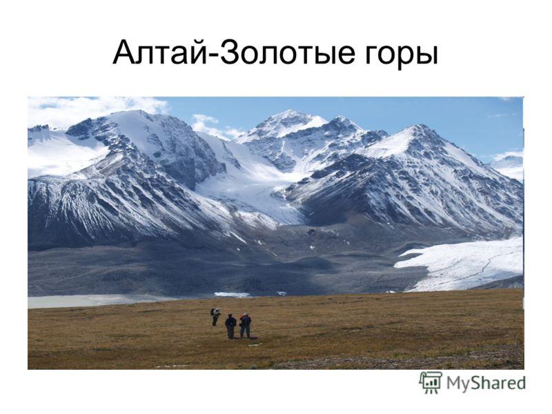 Алтай-Золотые горы