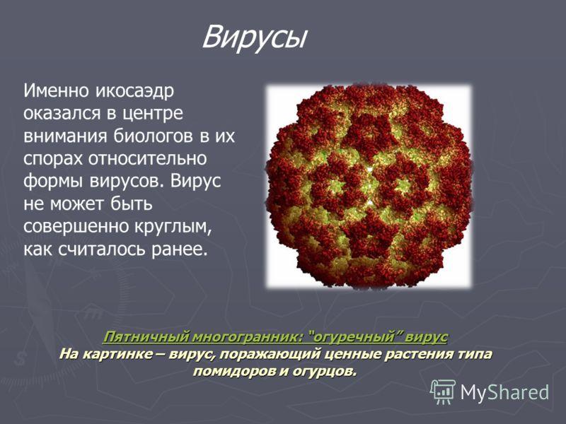 Форму одноклеточных организмов – феодарий точно передает икосаэдр. Форму одноклеточных организмов – феодарий точно передает икосаэдр. Чем же вызвана такая природная геометризация? Может быть, тем, что из всех многогранников с таким же количеством гра