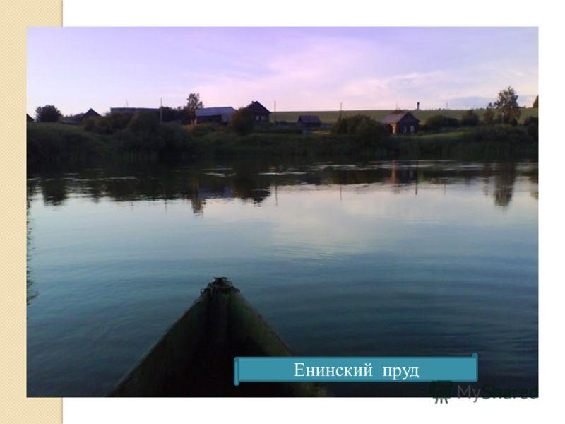 Енинский пруд
