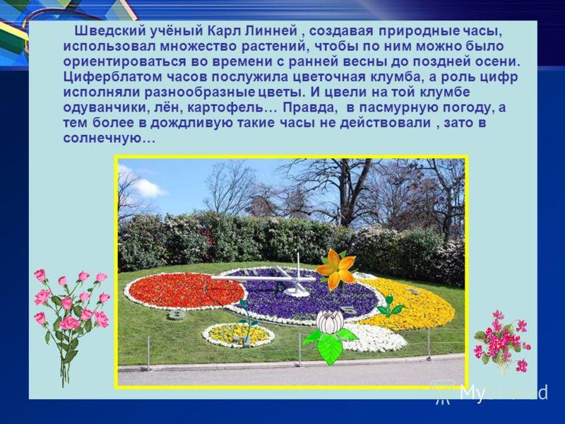 Шведский учёный Карл Линней, создавая природные часы, использовал множество растений, чтобы по ним можно было ориентироваться во времени с ранней весны до поздней осени. Циферблатом часов послужила цветочная клумба, а роль цифр исполняли разнообразны