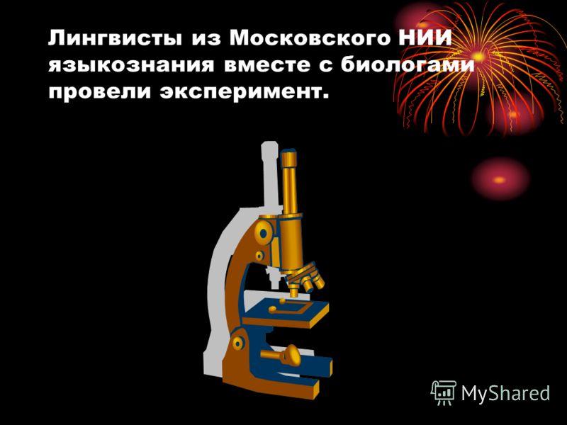 Лингвисты из Московского НИИ языкознания вместе с биологами провели эксперимент.