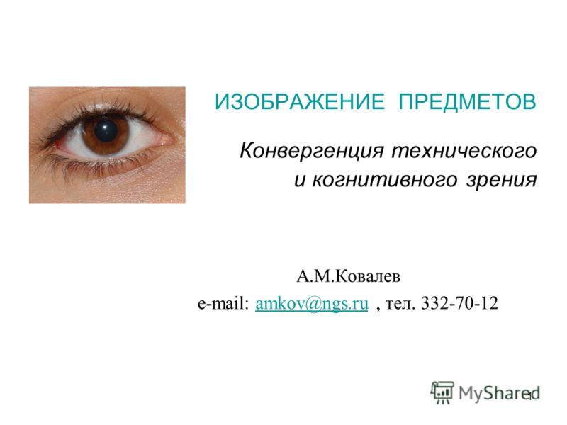 1 ИЗОБРАЖЕНИЕ ПРЕДМЕТОВ Конвергенция технического и когнитивного зрения А.М.Ковалев e-mail: amkov@ngs.ru, тел. 332-70-12amkov@ngs.ru