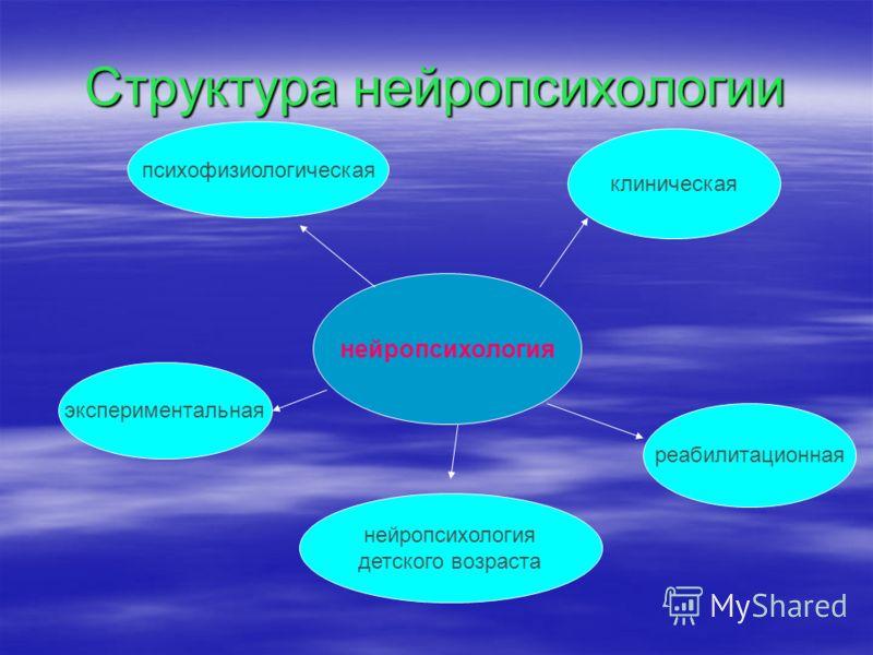 Структура нейропсихологии нейропсихология клиническая реабилитационная экспериментальная психофизиологическая нейропсихология детского возраста