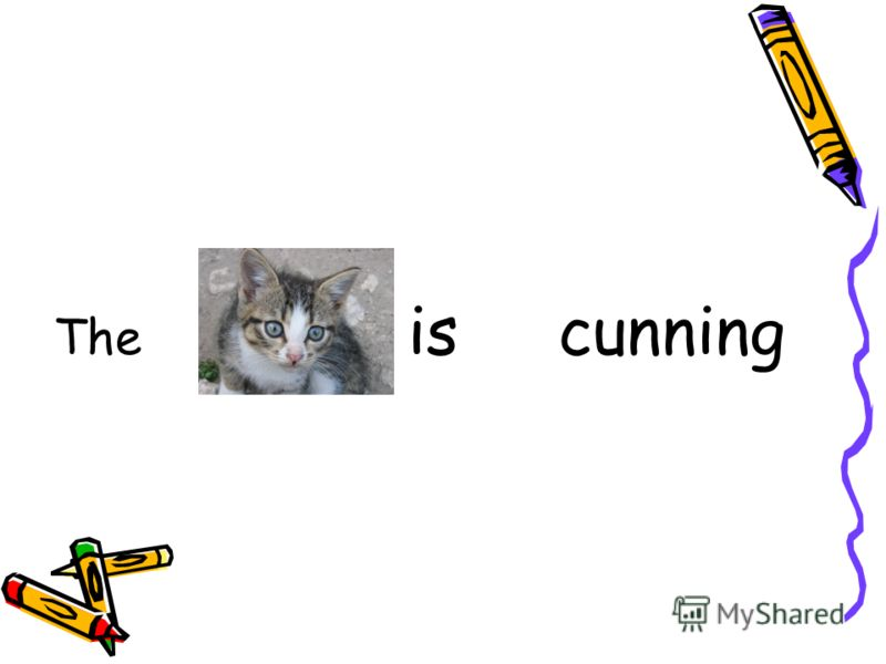 The is cunning