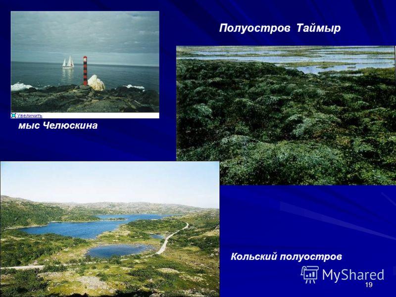 19 Полуостров Таймыр Кольский полуостров мыс Челюскина