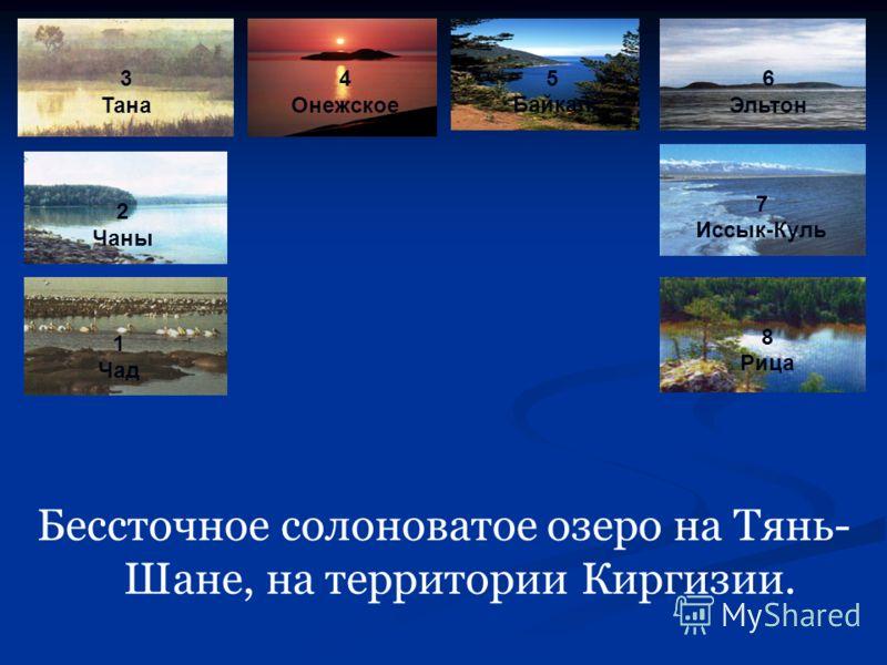 Бессточное солоноватое озеро на Тянь- Шане, на территории Киргизии. 1 Чад 2 Чаны 3 Тана 4 Онежское 5 Байкал 6 Эльтон 7 Иссык-Куль 8 Рица