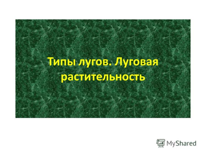 Типы лугов луговая растительность