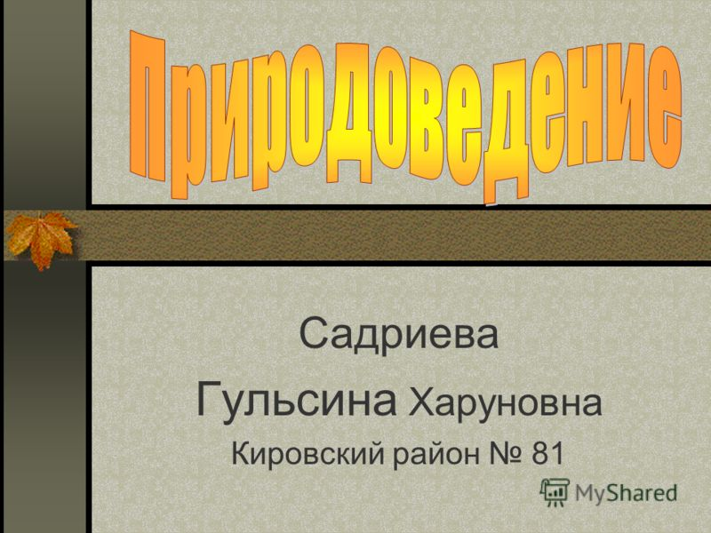 Садриева Гульсина Харуновна Кировский район 81