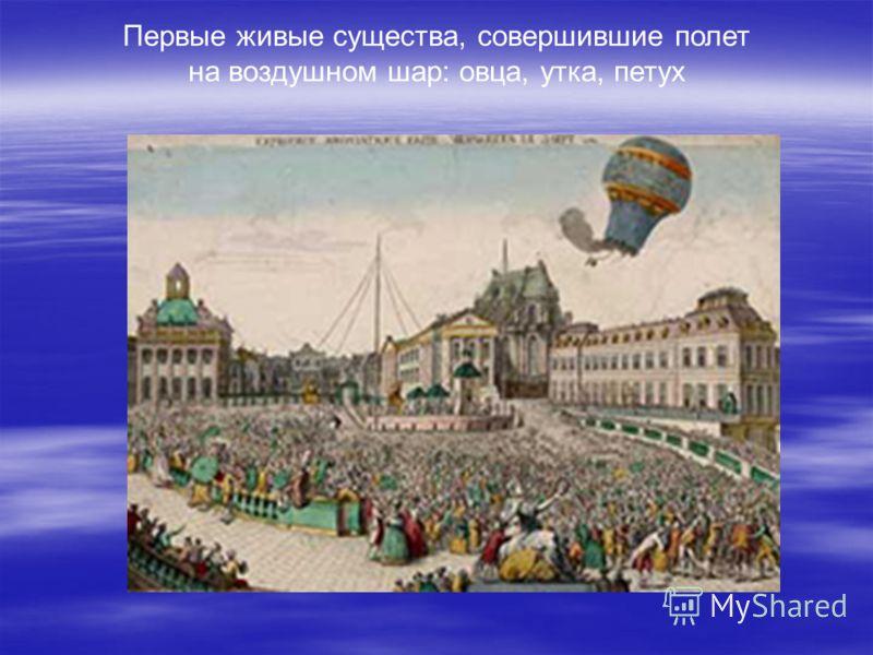 Первые живые существа, совершившие полет на воздушном шар: овца, утка, петух