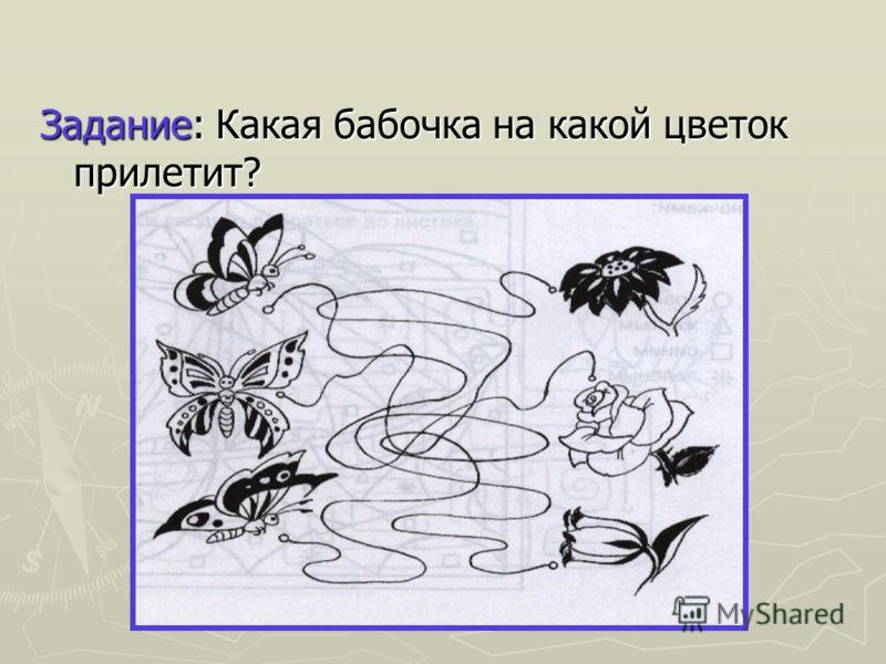 Задание: Какая бабочка на какой цветок прилетит?