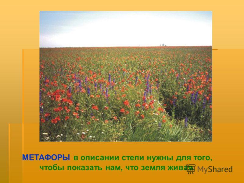 МЕТАФОРЫ в описании степи нужны для того, чтобы показать нам, что земля живая.