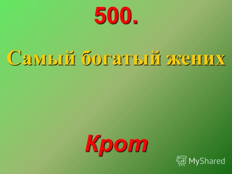 500. Самый богатый жених Крот