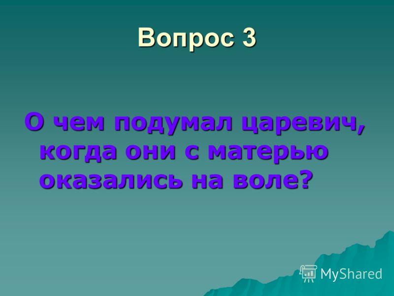 Вопрос 3 О чем подумал царевич, когда они с матерью оказались на воле?