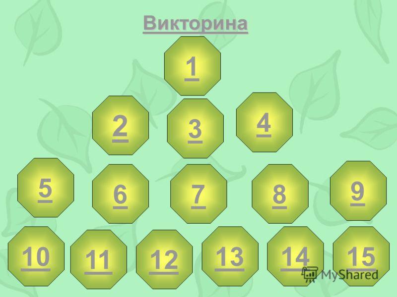 Викторина 1 2 3 4 5 678 9 10 12 131415 11
