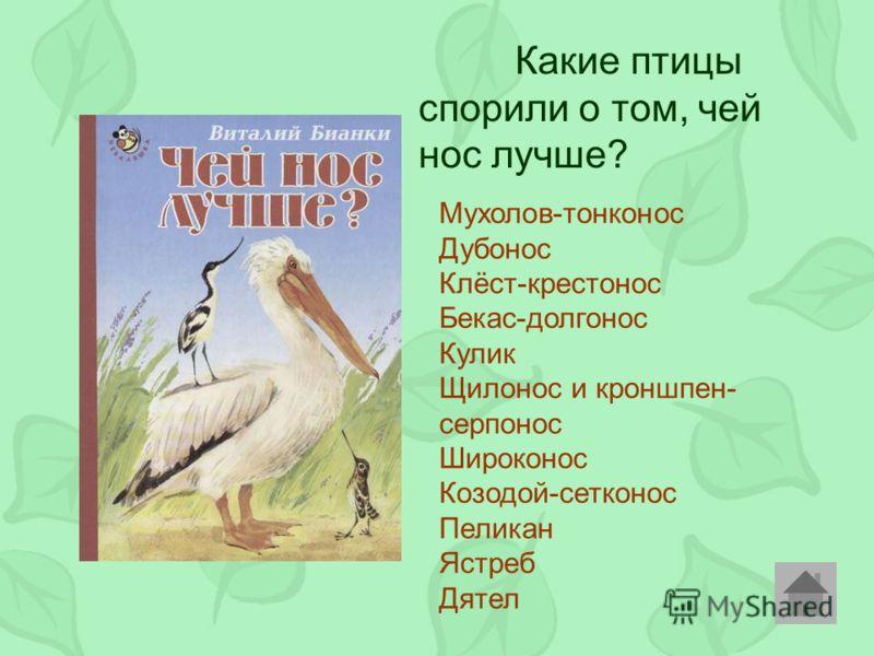 Какие птицы спорили о том, чей нос лучше? Мухолов-тонконос Дубонос Клёст-крестонос Бекас-долгонос Кулик Щилонос и кроншпен- серпонос Широконос Козодой-сетконос Пеликан Ястреб Дятел
