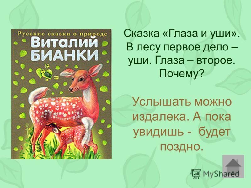Сказка «Глаза и уши». В лесу первое дело – уши. Глаза – второе. Почему? Услышать можно издалека. А пока увидишь - будет поздно.