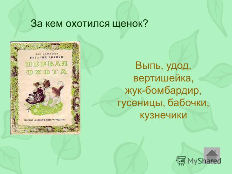 За кем охотился щенок? Выпь, удод, вертишейка, жук-бомбардир, гусеницы, бабочки, кузнечики
