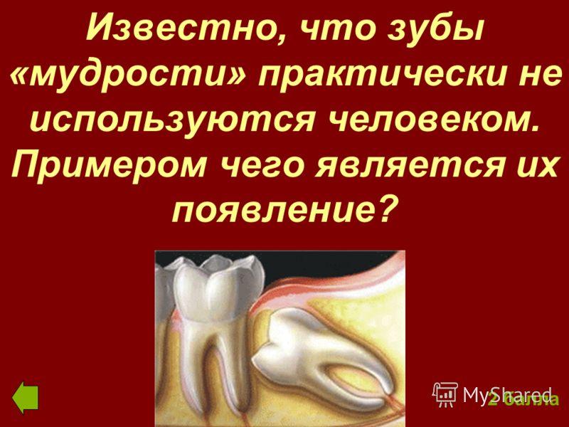 Известно, что зубы «мудрости» практически не используются человеком. Примером чего является их появление? 2 балла