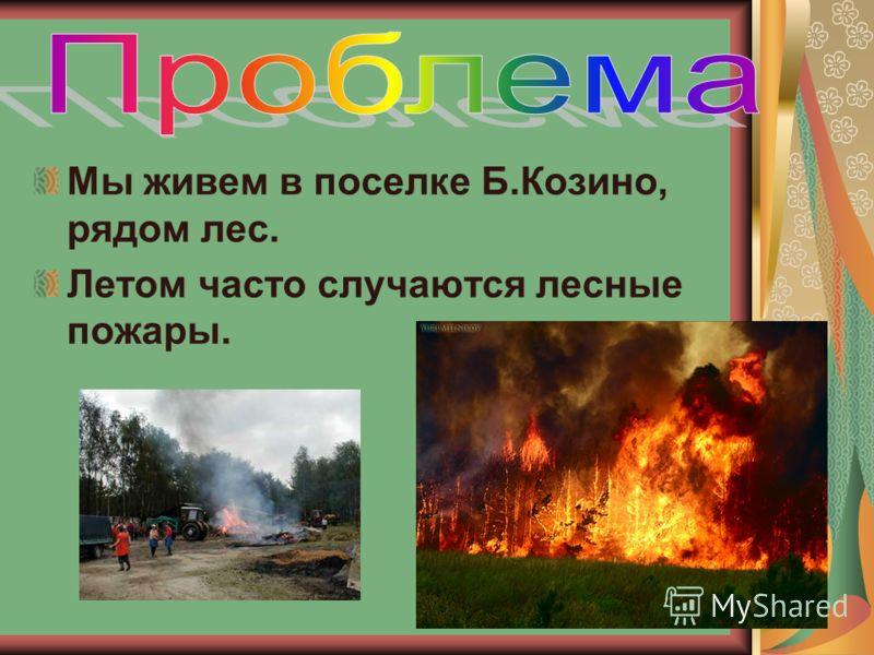 Мы живем в поселке Б.Козино, рядом лес. Летом часто случаются лесные пожары.