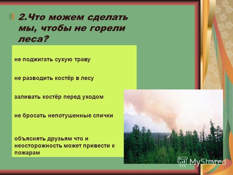 2.Что можем сделать мы, чтобы не горели леса? не поджигать сухую траву не разводить костёр в лесу заливать костёр перед уходом не бросать непотушенные спички объяснять друзьям что и неосторожность может привести к пожарам
