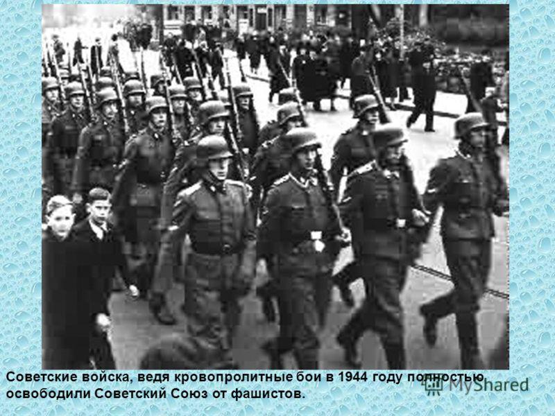 Советские войска, ведя кровопролитные бои в 1944 году полностью освободили Советский Союз от фашистов.