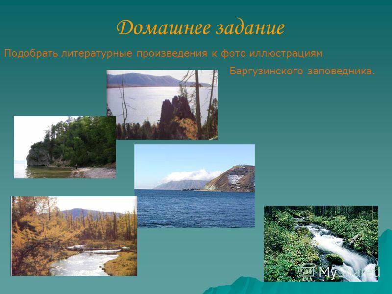Домашнее задание Подобрать литературные произведения к фото иллюстрациям Баргузинского заповедника.