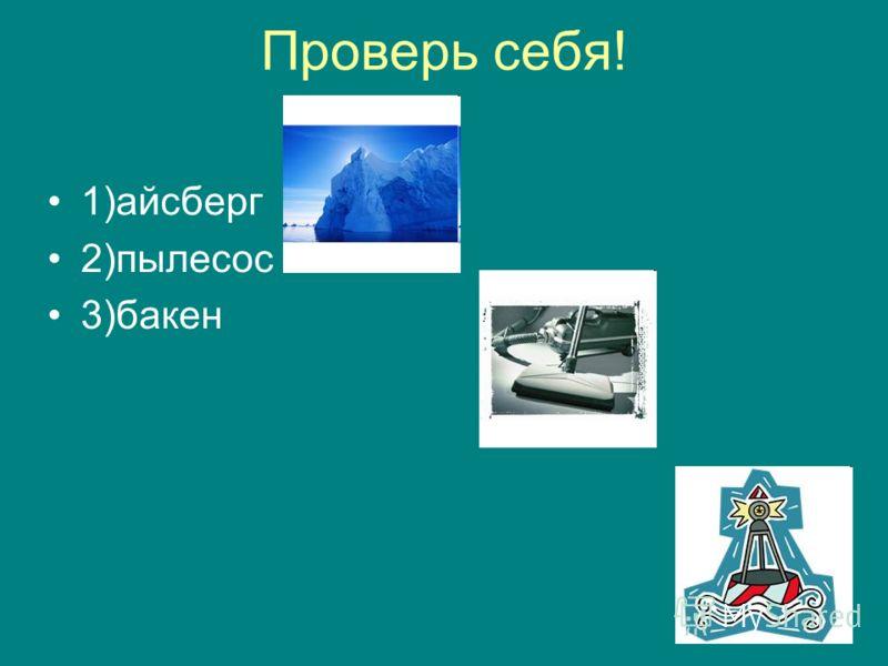 Проверь себя! 1)айсберг 2)пылесос 3)бакен