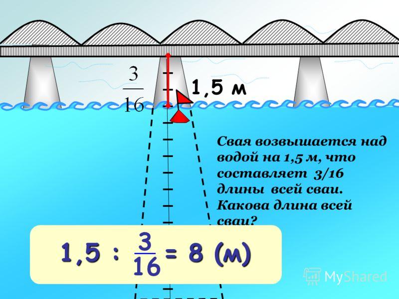 1,5 м Свая возвышается над водой на 1,5 м, что составляет 3/16 длины всей сваи. Какова длина всей сваи? 1,5 : = 8 (м) 3 16